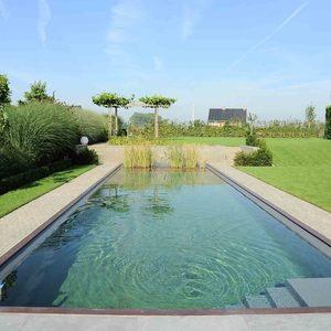 Zwemvijver in verlengde van het terras vereecke lieven - Model van het terras ...